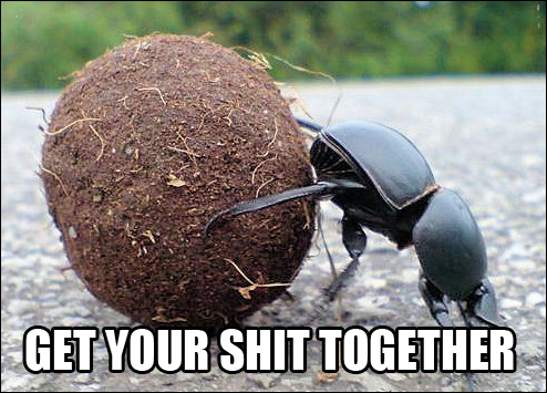 get your shit together meme