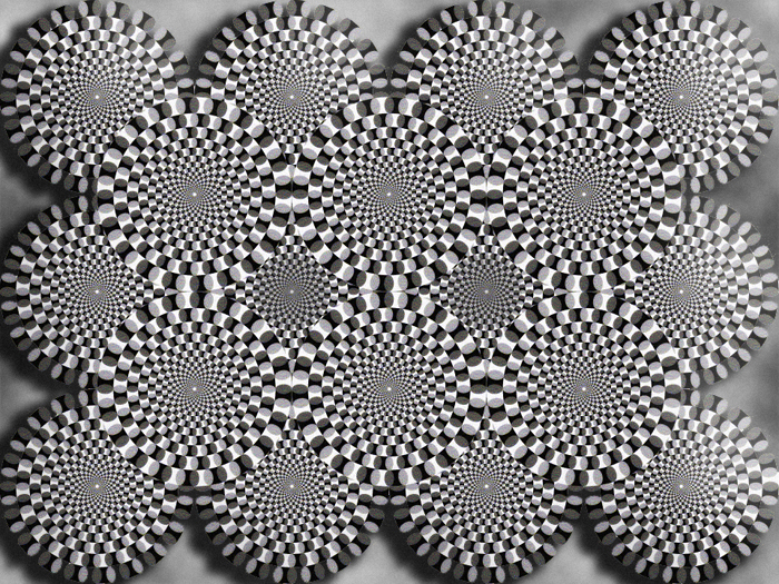 optical illusion 6(grey snakes)